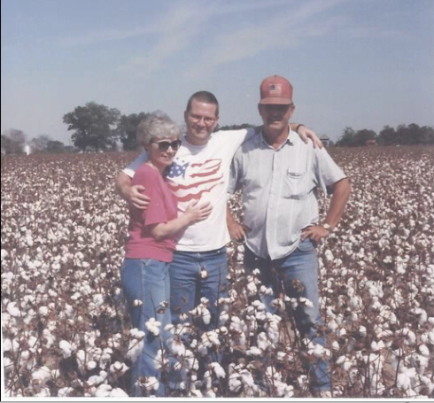 cotton crop in arkansas