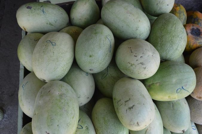 Fresh melons are coming into season here in Ecuador.