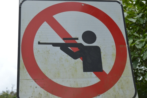 For all my associates with the National Rifle Association: Please refrain from shooting the monkeys.