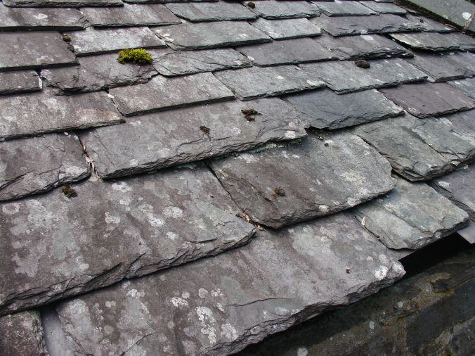 A typical slate roof in Galicia, Spain. I saw lots of this on the Camino de Santiago.