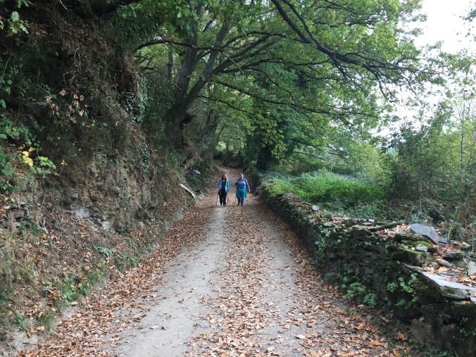 I believe this is my #1 favorite photo from our trip. Dana walking with Darla from Minnesota as we descend from O Cebreiro and enter Triacastela. It was a long hard walk and we were really tired and hungry about this time.