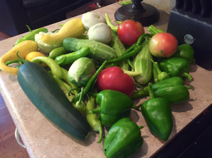 I had almost eight weeks of a garden harvest like this every day.